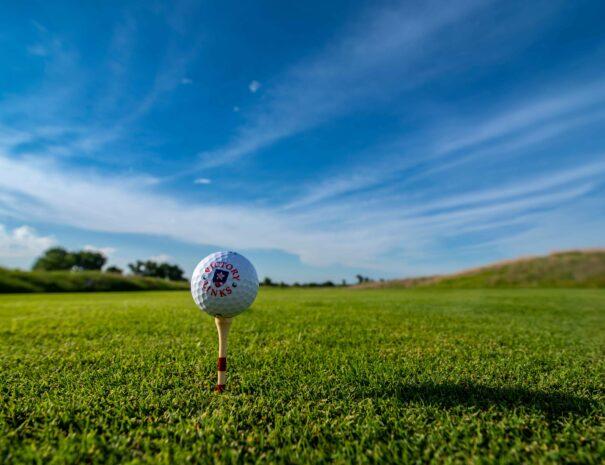 VLGC golf ball on tee